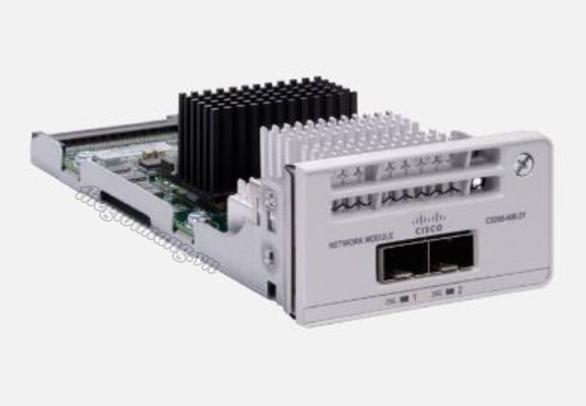 Module Cisco C9200-NM-2Y=